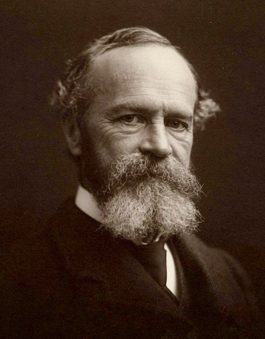 the old work of William James can help increase confidence of speech-language pathologists